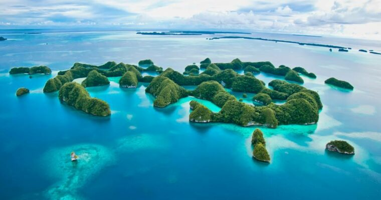 Protected: Pristine Palau, April 2021