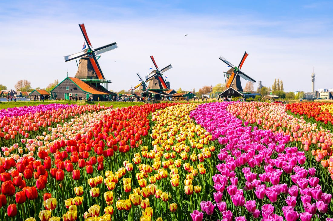 Protected: Netherlands – April 2021